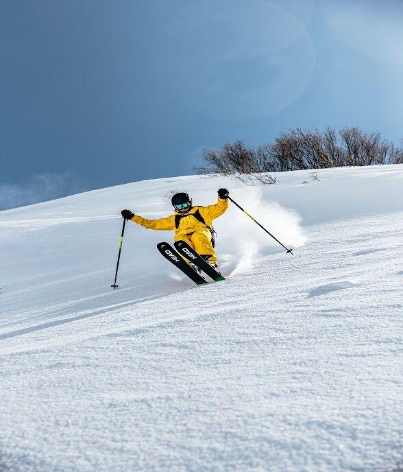 Alpine Ski's