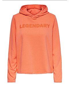 ONLY PLAY - onpfud life hood ls sweat - Oranje-Multicolour