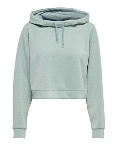 ONLY PLAY - onpdess cropped hood sweat - grijs