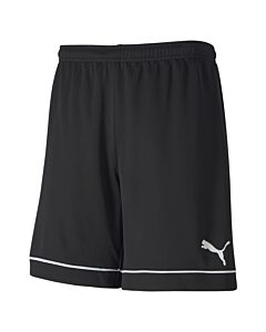 Puma teamgoal training shorts c